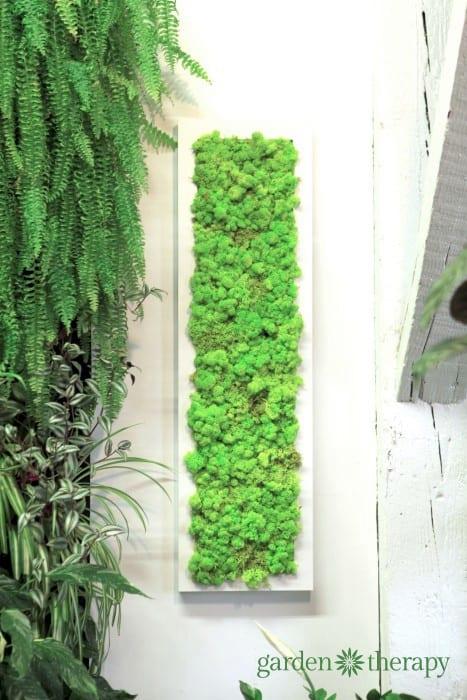 Moss Masterpiece