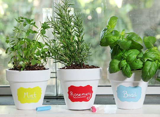 Chalkboard Flower Pot Labels