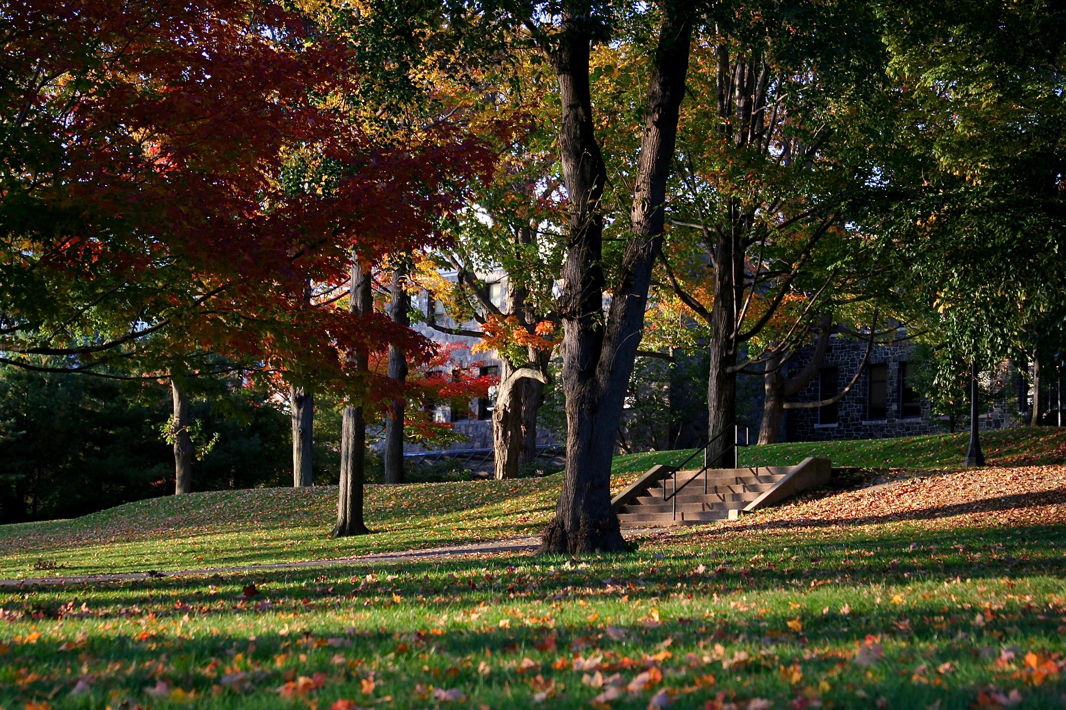 tufts_university_-_garden_presidents_lawn_