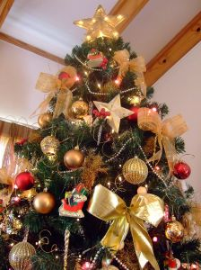 my-2007-christmas-tree-916351-m