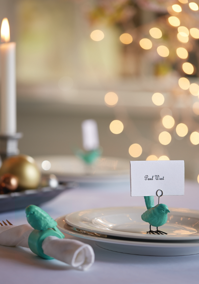 Napkin ring and placeholder