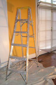 renovation-time-456576-m