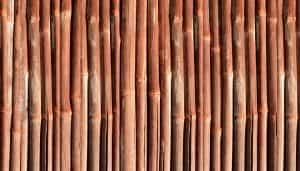 bamboo-886749_960_720