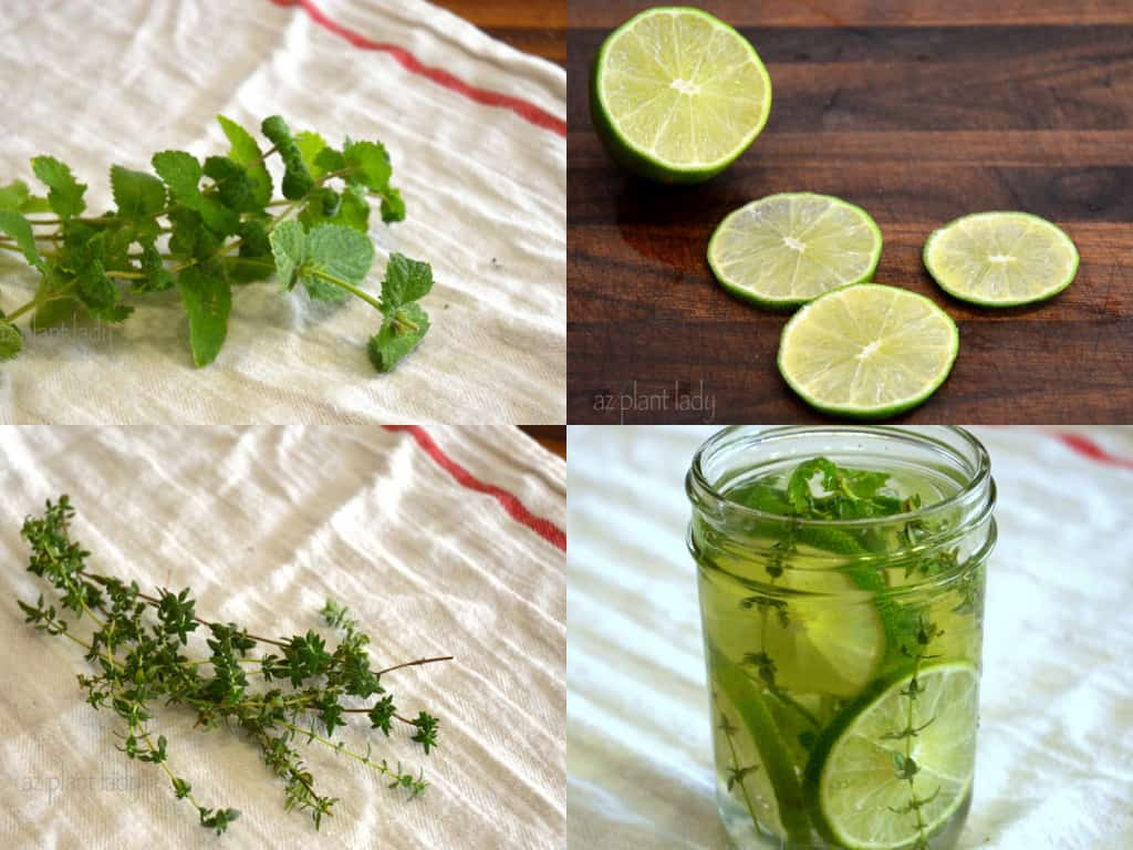 lime thyme mint and vanilla simmer pot recipes for spring