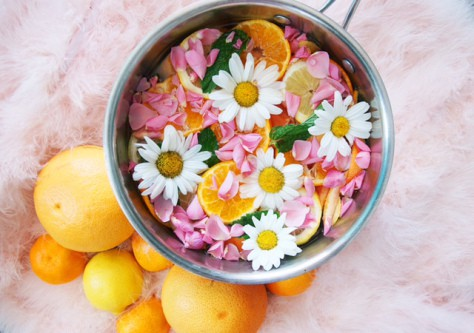 simmer pot recipes for spring