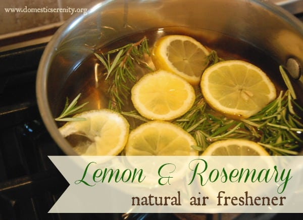 lemon and rosemary simmer pot recipes for spring