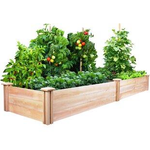raised cottage garden idea