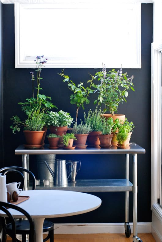 bar cart kitchen herb garden