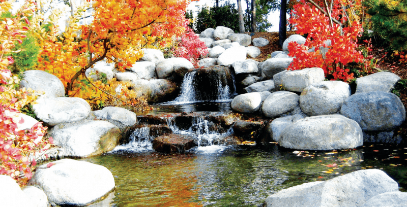 Ask An Expert Prepare Your Pond For Winter Home Trends
