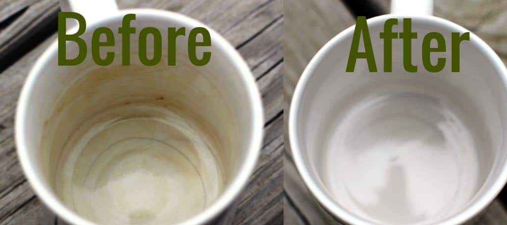 Coffee Cup Stain Remover