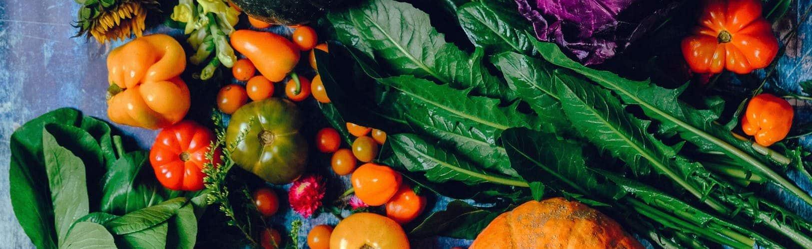 growing food worth it
