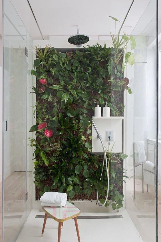 Display Houseplants