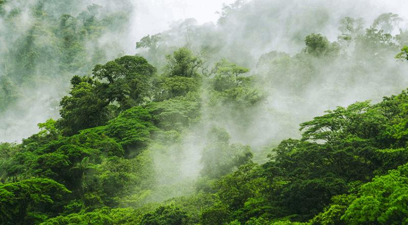 Costa Rica Travel Highlight